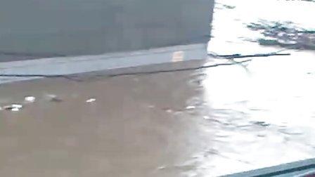 口前洪水实拍009