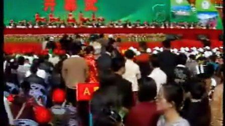 第二届海峡两岸(福建华安)茶文化节(1)