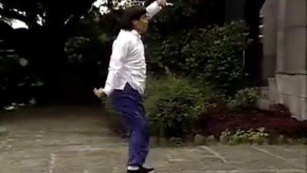 中國武術名拳錄---北少林拳