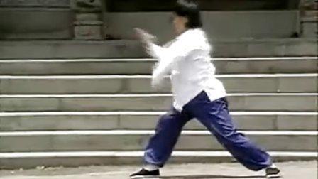 中國武術名拳錄---少林連步拳
