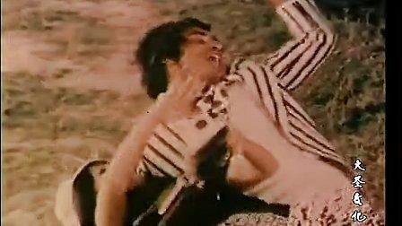 巴基斯坦经典老电影(永恒的爱情)上 国语 长影厂译制_标清
