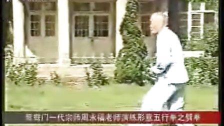 中国武术新九段-周永福打形意劈拳