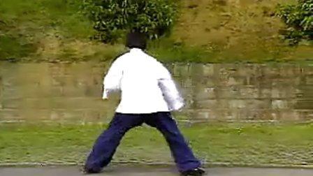 中國武術名拳錄---大八極拳