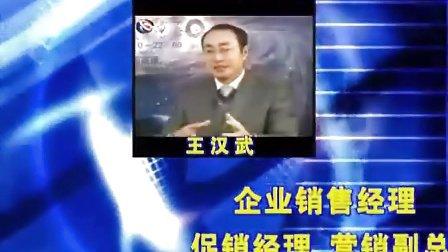 王汉武谈低成本品牌营销策略