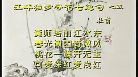 诗情画意49清狂野逸,沉醉东风杜甫《江畔独步寻花七绝句》之五赏析