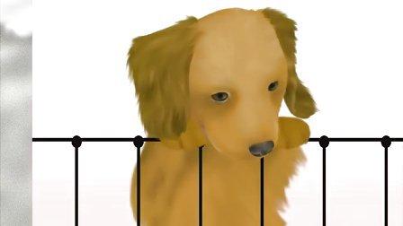 可爱的小狗狗-电脑桌面壁纸