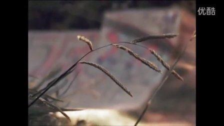 Milton Martinez 滑板短片