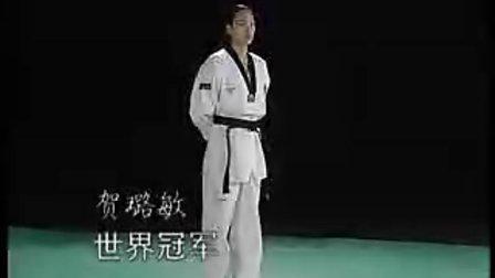 央视跆拳道中文教学24
