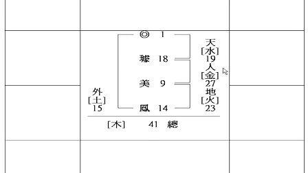 禅式紫微教学专辑00011-璩美凤的基因模式