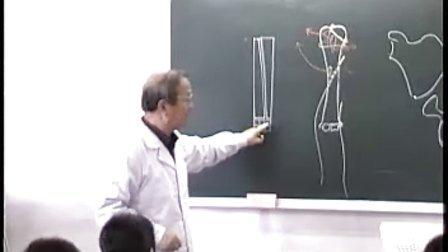 哈医大系统解剖学 3附肢骨骼