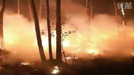 扑救森林火灾案例分析