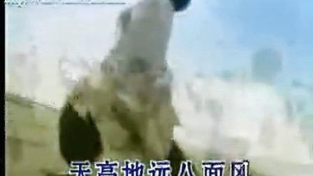 屠洪刚——中国功夫、精忠报国