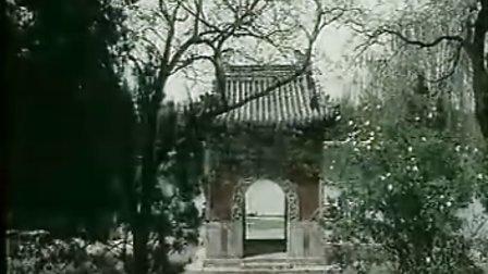 电视风光片《中国牡丹》花开时节动京城