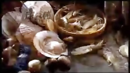 赵雪莲 康师傅海陆鲜汇广告