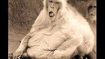 肥胖的危害 美女也会变丑女
