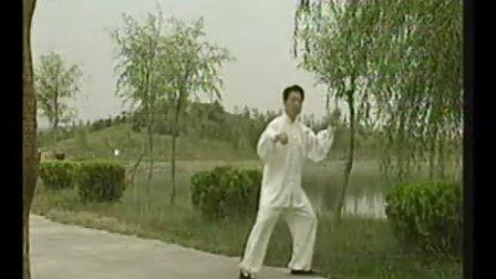 武当赵堡太极拳教学合集(刘瑞、宋蕴华、原宝山等大师之视频)