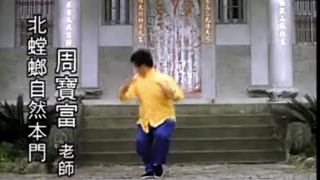中國武術名拳錄---螳螂小虎燕