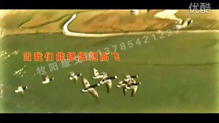 石家庄婚庆-2011爱不是浮云(缘文画)