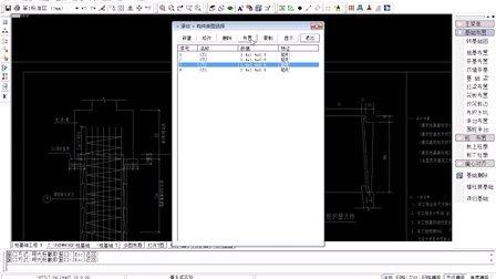 人工挖孔桩钢筋CAD识别建模抽钢筋