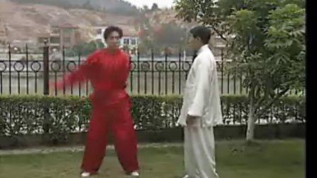 通臂拳基本功---八把活臂法