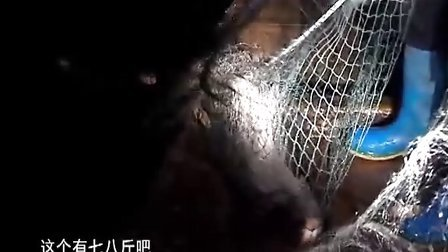 老家-下车湾纪事(原色版)