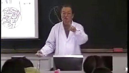 哈医大系统解剖学 14静脉、淋巴系统
