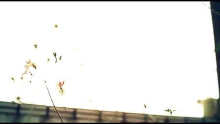 【萧】[MV首播]丝袜小姐-傻烂Q行星的寂寞运转