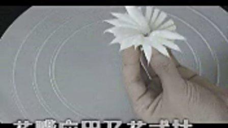 菊花-蛋糕模型 蛋糕裱花 制作过程 花嘴使用方法 DIY蛋糕DIY