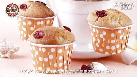 浙江天搜科技 爱烘焙 蔓越莓玛芬蛋糕