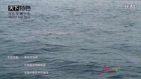 毛里求斯-看海豚  拜访野生海豚之家,与海中精灵一起嬉戏