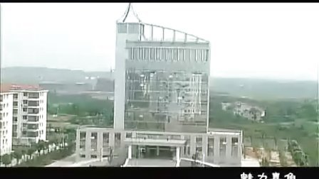 嘉鱼宣传片
