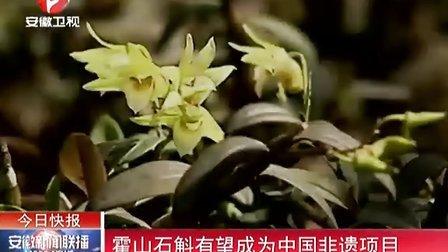 霍山石斛有望成为中国非遗项目[安徽新闻联播]