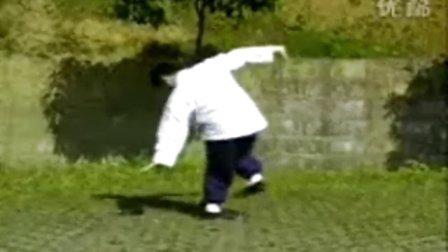 中國武術名拳錄---八極連環拳