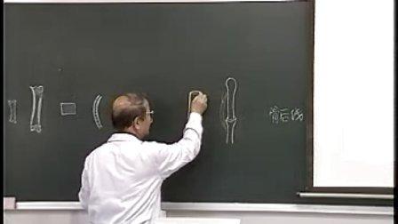 哈医大系统解剖学 1绪论、骨学总论与躯干骨