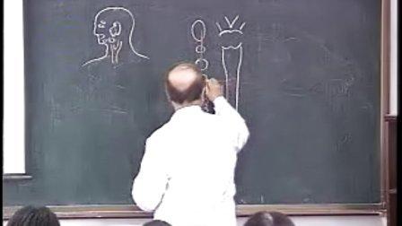 哈医大 系统解剖学 26内脏神经