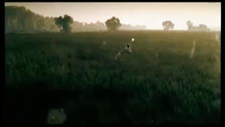 水木年华-完美世界
