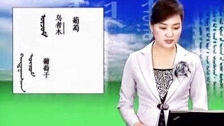 蒙古语标准音_第56课瓜果