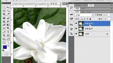 PS将鲜花图片转成工笔画