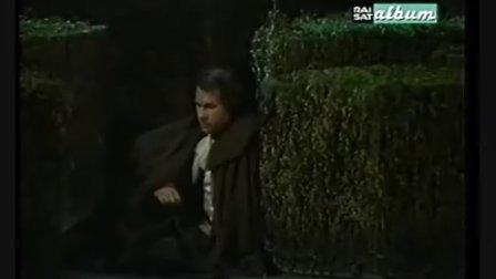 【茶一壶】莫扎特-费加罗的婚礼No.28  美妙的时刻将来临