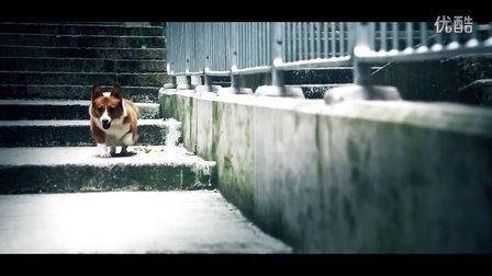 寵物牠MV - 鄭欣宜