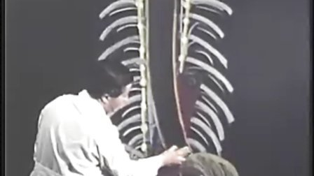 [斯坦福大学开放课程:临床解剖学].3.2B.