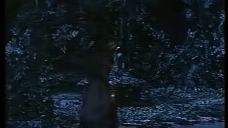 【茶一壶】莫扎特-费加罗的婚礼No.24 丢了发针,多么悲伤