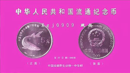 中华人民共和国流通纪念币十枚(中国珍稀野生动物)欣赏