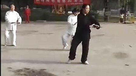 剑舞瑛姿56式太极拳