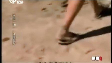 【SYY】荒野求生-求生一加一沙漠弃车(20110213)