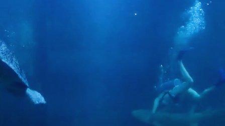 北海海底世界水族馆