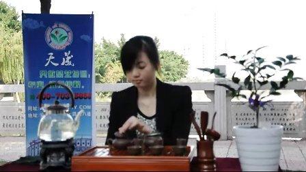 福建省泉州天晟茶艺培训基地【安溪茶都】