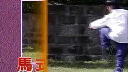 中國武術名拳錄---螳螂崩步拳