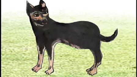 动物繁殖——小狗的诞生