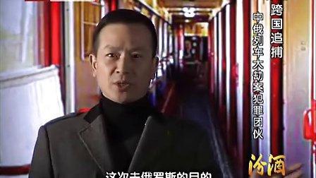 1993 跨国追捕中俄列车大劫案罪团伙 档案 120416 高清